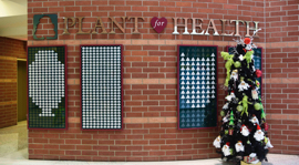 PLANT FOR HEALTH INITIATIVE LAUNCHES